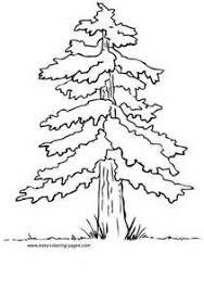 134 best arboles images on pinterest celebrities deko and draw
