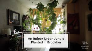house tour an indoor jungle grows in brooklyn apartment therapy