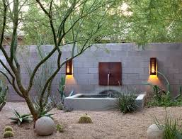 Modern Front Yard Desert Landscaping With Palm Tree And 429 Best Drought Tolerant Gardens Images On Pinterest Garden