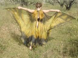 25 butterfly wings ideas butterfly butterfly