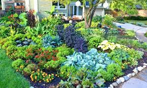 Shady Garden Ideas Shady Garden Ideas Add A Bridge Pinterest Small Shade Garden Ideas