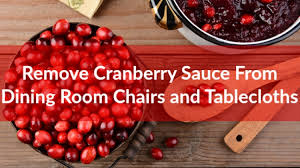 How To Remove Sauce Stains Sauce Upholstery And Removing Cranberry Sauce From Dining Room Chairs And Tablecloths Coit