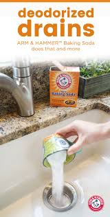 Garbage Disposal Backing Up Into Single Sink by Best 25 Garbage Disposal Smell Ideas On Pinterest Garbage