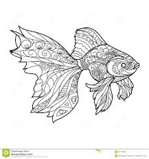gold fish coloring book for adults vector stock vector image