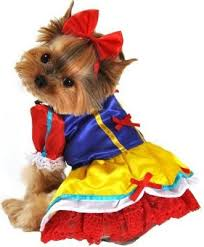 Dog Halloween Costumes 97 Furry Tails True Images Pet