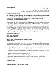 executive resume sample in word and pdf formats