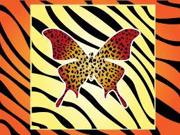 tiger stripe butterfly