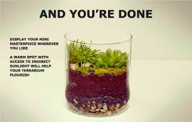 make your own terrarium ikea