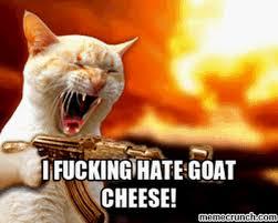 Cheese Meme - cheese 2