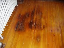 a few tips to keeping your hardwood floors looking amazing