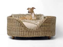 Wicker Beds Wicker Dog Beds With Legs U2014 Bitdigest Design A Classic Wicker
