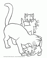 cat kitten coloring pages trends book cat kitten coloring