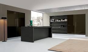 Modern European Kitchen Cabinets by Modern Kitchen Cabinets European Cabinets U0026 Design Studios
