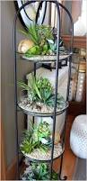 outstanding mini indoor gardens that will amaze you