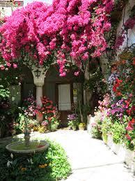 imagenes de jardines pequeños con flores plantas para viviendas en la costa el blog de anida