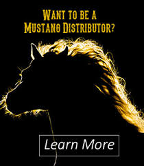 mustang manufacturing company inc mustang manufacturing manufactures of quality tack