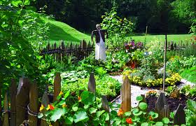 Backyard Vegetable Gardening by Backyard Vegetable Garden Design Ideas U2013 Bills Garden