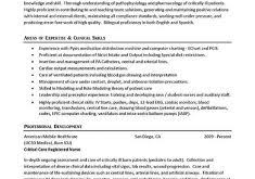 Sample Er Nurse Resume by Grand How To Create Resume 13 Resume Builder Free Resume Example