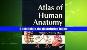 Netter Atlas Of Human Anatomy Pdf Download Download Illustrated Essentials Of Musculoskeletal Anatomy Kay W