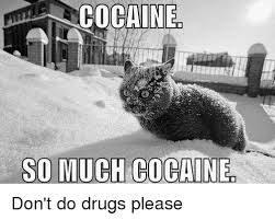 Don T Do Drugs Meme - so much cocaine don t do drugs please drugs meme on esmemes com