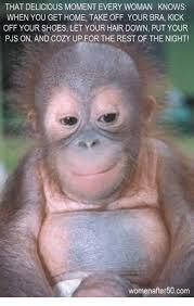Monkey Meme Generator - monkey haircut meme maker the best haircut 2017
