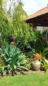 Tropical Gardening Ideas Daniel S Tropical Garden In Australia Finegardening