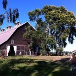 wedding venues washington state barn wedding venues washington state find your location