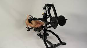 powertec compact gym bodydesign fitness youtube