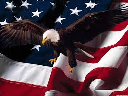 pictures of eagles with american flag eagle and american flag