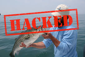 how hackers turned a cape cod fishing guide u0027s site into a host for