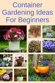 Gardening Ideas Pinterest Container Gardening Ideas For Part Shade Vegetable Pinterest