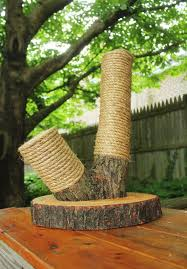 best 25 diy cat scratching post ideas on pinterest cat