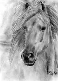 beautiful horse drawing black horses pinterest horse drawn