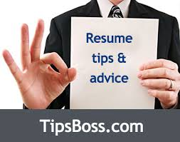 Resume Tips Resume Tips Resume by Basic Curriculum Vitae Resume Cv Format
