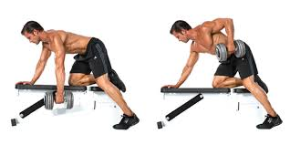 Bench Barbell Row How To Perform Barbell Dumbbell Bent Over Rows Form U0026 Proper
