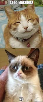 Good Morning Cat Meme - good morning no grumpy cat vs happy cat make a meme