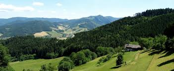 Bad Urach Wandern Die 10 Schönsten Wanderungen Im Schwarzwald Komoot