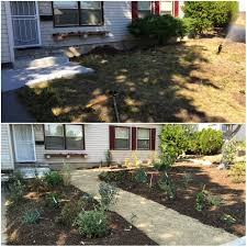 Backyard Renovations Before And After Xeriscape Nevada Drought Prevention Big Time Part 3 Full Circle