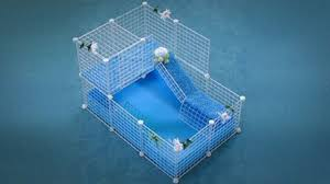 cages guinea pig today