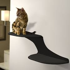 Wall Shelves For Cats 172 Best Wall Shelves For Cats To Climb Images On Pinterest Cat