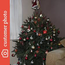buy norway spruce christmas trees online send me a christmas tree
