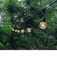 12v Led Light String by Outdoor String Lights Commercial Grade Novelty Lights Inc