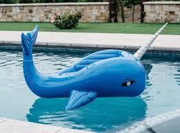 Giant Inflatable Pool Home Design Ideas and