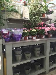 22 best garden centre display ideas images on pinterest garden