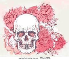 human skull peony rose poppy flowers stock vector 653452087