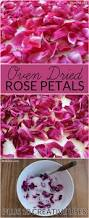 best 25 drying roses ideas on pinterest dried flowers