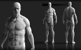 Human Anatomy Reference Tag 3d Sk Human Anatomy Reference Models Human Anatomy Library