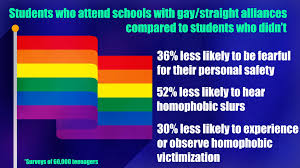 Vanderbilt Flag Lgbtq Students Feel Safer At Schools With Straight Alliances