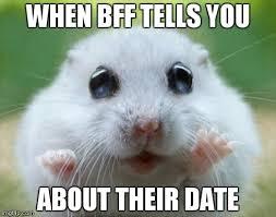 Cute Memes - hamster cute memes imgflip
