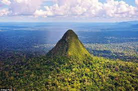 Amazon Com Method Daily Wood by Stunning Pictures Of Amazon U0027lost World U0027 The Size Of Wales Daily
